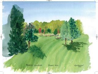 Picnic Hill  Watercolour  18 5 x 16 5 Kim Hughson