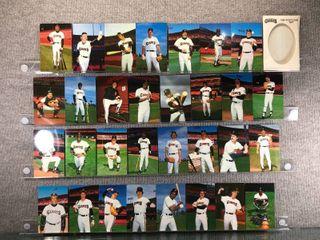 1984 San Francisco Giants Team Postcard Set