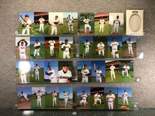1985 San Francisco Giants Team Postcard Set
