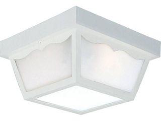 Progress lighting Non Metallic Ceiling light w  Acrylic Diffuser