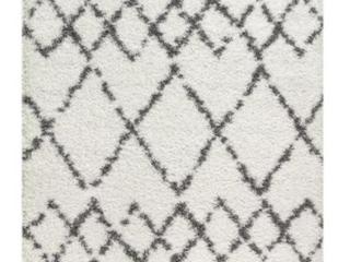 Mercer Shag Plush Tassel White Area Rug Retail 89 49