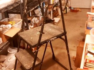 Costco Step ladder with Work Tray