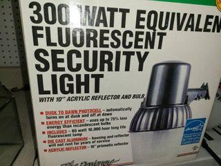 300 Watt Security light