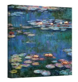 Claude Monet  Water lilies  Wrapped Canvas Art