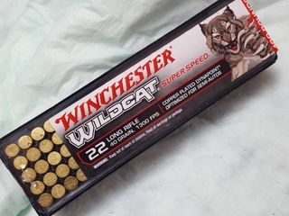 100 ct    22 lR bullets  40 grain   1300 FPS  Winchester Wildcat