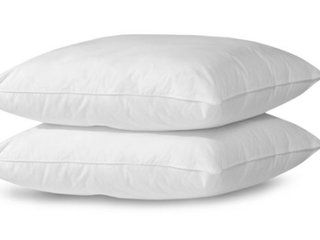PAIR OF MEMORY FORM PIllOWS