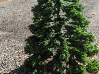 Christmas tree 7 foot cedar not in original box