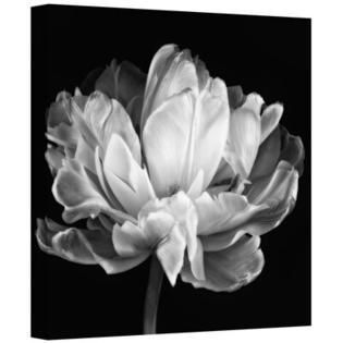 ArtWall Cora Niele  Tulipa Double Black   White II  Gallery Wrapped Canvas