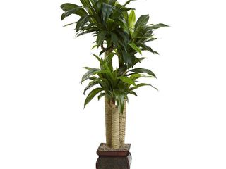 Nearly Natural Real Touch Cornstalk Draceana with Vase  Retail 152 49