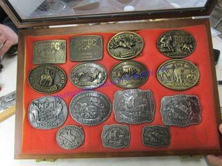 15 HESSTON BUCKlE SET