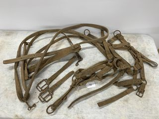 Vintage leather Bridles