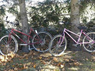 Pair of Mountain Bikes