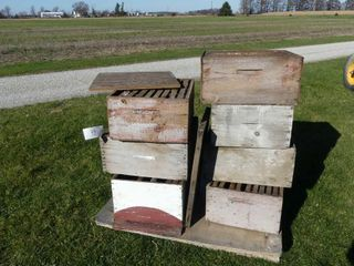 Quanity of Bee Super Boxes