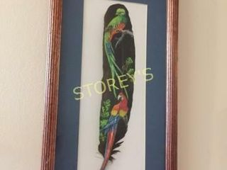 Framed Costa Rica Feather   9 x 17