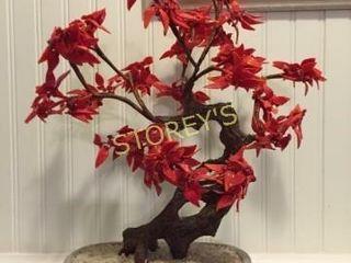 Bonzi Tree