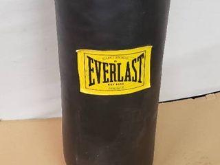 Everlast Full Size Punching Bag