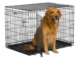 Midwest iCrate Double Door Folding Metal Dog Crate  42 Inches by 28 Inches by 30 Inches