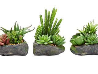 Pure Garden Artificial Succulent Plant Arrangements In Faux Stone Pots 3 Piece