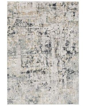 Surya Quatro Qua 2302 Silver Gray 9 3  x 12 3  Area Rug