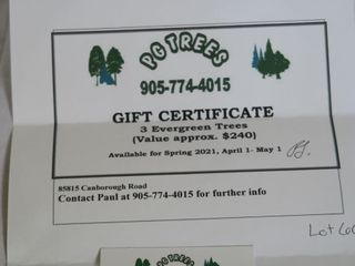 Gift Certificate for 3 Evergreen Trees