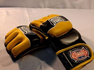 Combat Sports Training Gloves