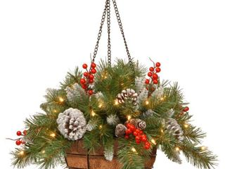 National Tree 20  Frosted Berry Hanging Basket with Cones  Red Berries and 50 Warm White lED Battery Operated lights with Timer