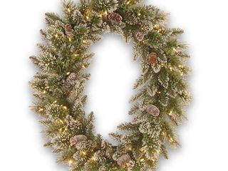 National Tree GB3 307 30WBC Glittery Bristle Pine Oval Wreath with 8 Tipped Cones