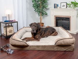 FurHaven Pet Dog Bed Velvet Waves Perfect Comfort Orthopedic Sofa Pet Bed for Dogs   Cats   Available in Multiple Colors   Sizes