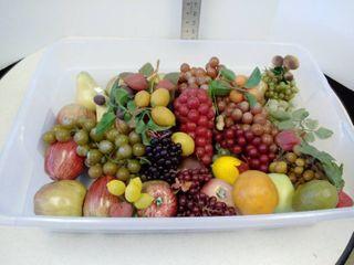 lot of plastic fruit
