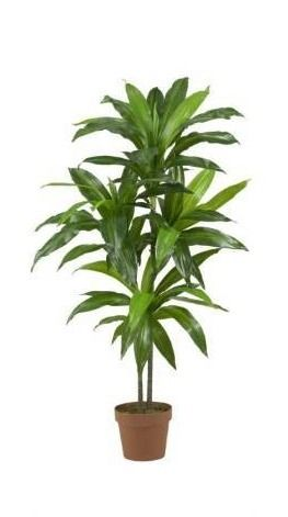 Porch   Den Mill Park Division Dracaena Real Touch Artificial Plant