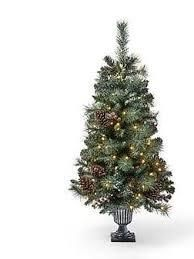 Galen 4 foot Pine Pre lit Clear lED Pre Decorated Artificial Potted Christmas Tree by Christopher Knight Home
