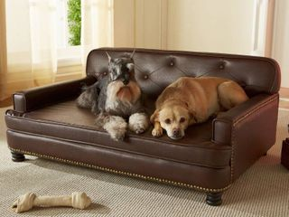 Enchanted Home Pet library Sofa  Retail 279 49