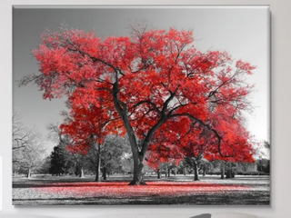Design Art Big Red Tree On Froggy Day