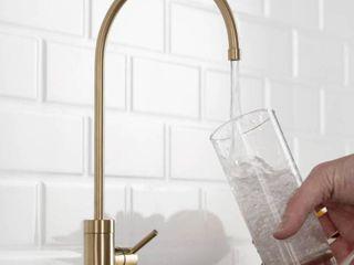 Purita Drinking Water Dispenser Beverage Kitchen Faucet in Brushed Gold