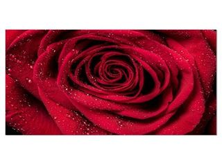 Red Rose Petals with Rain Droplets   Floral Canvas Art Print Retail 91 49