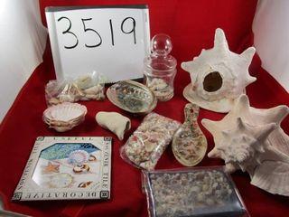 Sea shells    conch
