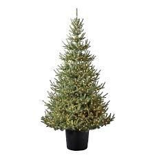 holiday living Christmas tree 7 ft pre lit potted for tree