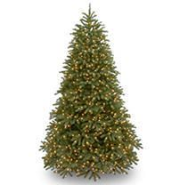 6 5 ft  Jersey Fraser Fir Medium Tree with Dual Color lED lights  Retail 526 99