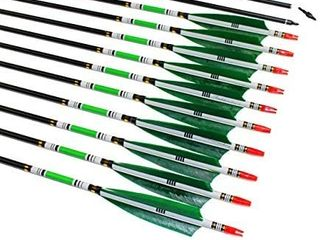 TTAD 31 inch Carbon Arrows Green Turkey Feather Targeting Arrows Archery with Screw in Field Tips Hunting Practice 12 Pack