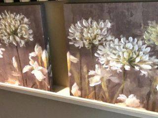 2  Canvas White Flower Prints