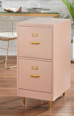 Carson Carrington Erfjord 2 drawer File Cabinet Retail 161 99