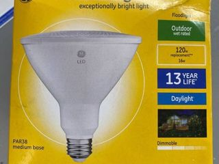 GE Ultra Bright lED Outdoor Floodlight