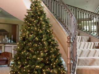 6 5 ft  Carolina Pine Tree with Clear lights Retail 307 99