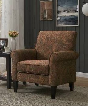 Copper Grove Herve Paisley Arm Chair  Retail 265 49