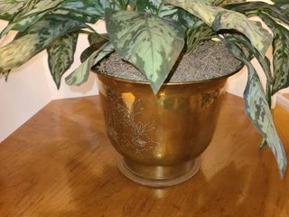 Faux Plant with Brass Planter