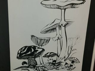 Framed Canvas Art  MUSHROOM