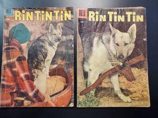 Rin Tin Tin No  6 and No  11