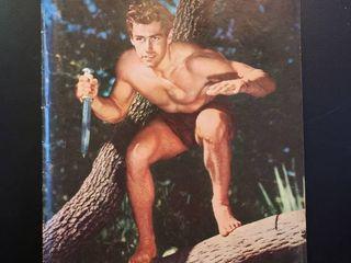 Tarzan No 83