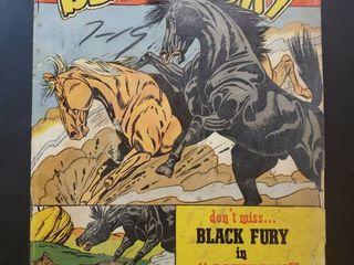 Black Fury No  27
