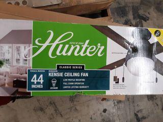 Hunter 44in Indoor Ceiling fan